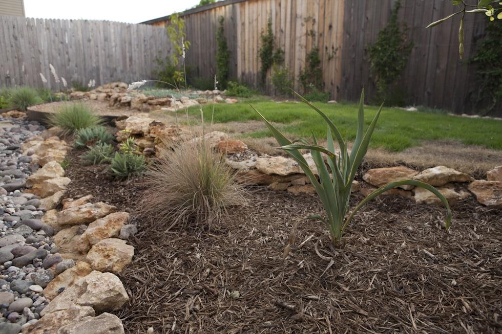 Native Plant Garden Bed